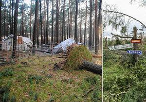 Bouře v Polsku porazila obří strom na tábor, dvě skautky zemřely.