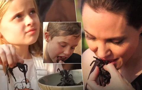 Angelina Jolie krmí děti smaženými pavouky. Nejdřív utrhni kusadla, radí herečka