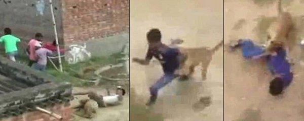 Levhart se vrhl na dítě (3) na strýcově klíně, ve vesnici zranil 10 lidí