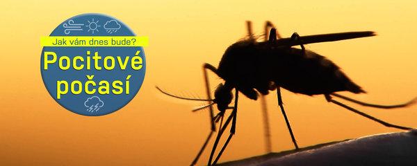 Startují horké dny: Nebude nám dobře a komáři začnou jančit
