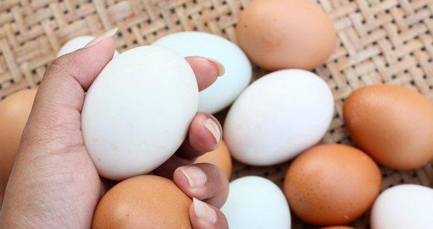 Jsou lepší bílá nebo hnědá vejce? A jak poznáte, že jsou čerstvá?