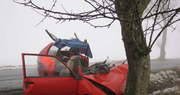 Hasiče museli z vozu vystříhat jeho kolegové.