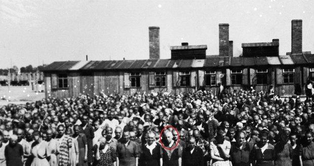 Vzácné Osvětimské album našla v roce 1945 Jacobová, která se na některých záběrech poznala.