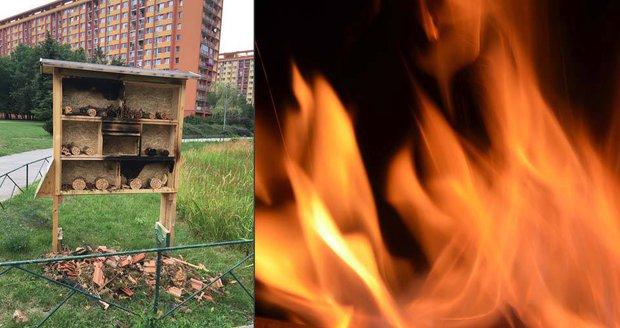 Žhář »upálil« hmyz zaživa: Komu v Praze 8 vadí hmyzí hotely?