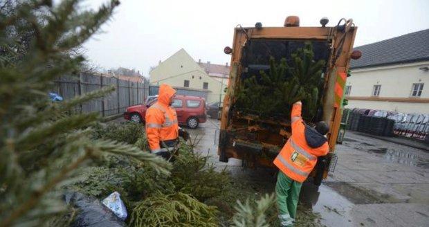 Stromky odložte k popelnicím na směsný odpad