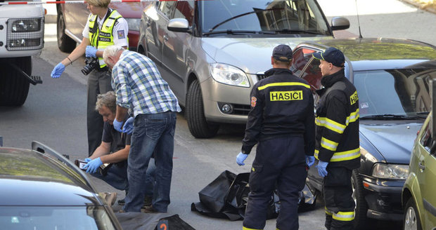 Vlastu (†66) rozdrtilo popelářské auto: Zemřela před domem beznohé sestry (70)