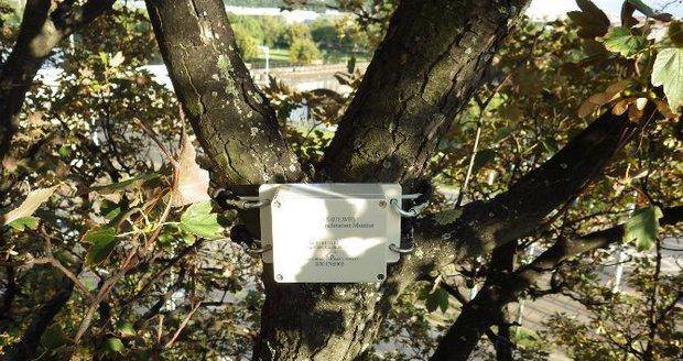 Krabička vyhodnocuje náklon stromů.