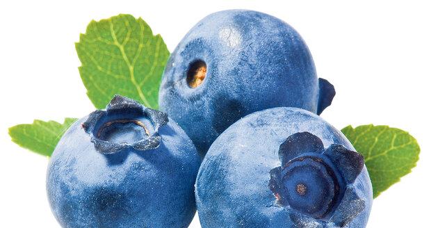 Velké množství vitamínu C, antioxidanty a další účinné látky obsahují borůvky.