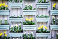 Vy�e�te z�hony do v�ky:    5 krok�, jak zalo�it vertik�ln� zahradu i na mal�m balkon�