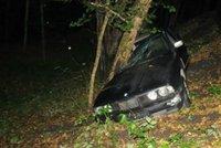 Opilý řidič na Karvinsku přejel důchodce, ten na místě zemřel