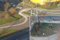 V Praze v mrazu sekají trávu, v Mostě sypou suché silnice: Internet šílí z vládců měst