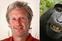 """Není primát jako primát, dokonce ani v USA. Soud neuznal opičí """"selfie"""""""
