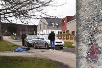 Záhadné úmrtí na Plzeňsku: Zabil ženu (†55) strach? V ruce svírala pepřák