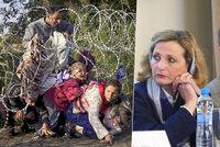 Raději do Iráku než žít v Česku: Experti řešili, proč od nás uprchlíci utíkají