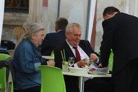 Na nudli�ky, pane prezidente?: ��f protokolu kr�jel Zemanovi ��zek