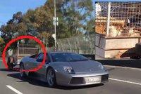 No ty kozo! Lamborghini za 12 milion� t�hlo p��v�s s kozi�kami a sl�mou