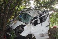 Dod�vka u Krom���e vlet�la do stromu: Spolujezdec nep�e�il