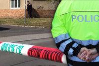 Brutálně zmlácená žena z Plzně: Policie pátrá po klíčovém svědkovi