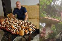 �e�i hl�s� houbov� �n�: 218 koz�k� i skoro dvoukilov� h�ib