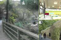Pra�sk� zoo postav� pavilony za miliardu. Pod�vejte se, jak zahradu zveleb�