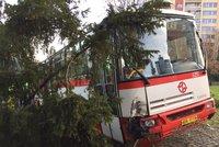 V Hostivaři havaroval autobus s cestujícími: Námraza ho poslala do stromu