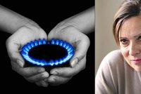 Bojujte o levnější plyn: Poradíme, jak na to