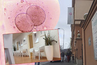 Embrya dvěma ženám zaměnila klinika v Brně. Odkud jsou zklamané pacientky?