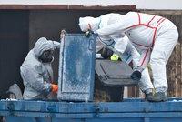 V Česku se objevil nový typ ptačí chřipky: Zabil labuť v liberecké zoo