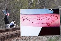 Pravda o sebevražedné hře Modrá velryba v Česku: Máme důkazy. Děti plní úkoly, tvrdí policie
