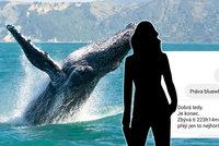 Psala jsem si s kurátorem Modré velryby, svěřila se Lucie (26): Teď jí vyhrožuje smrtí