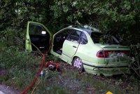 Řidička narazila autem do stromu! Zranila sebe i další ženu