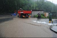 Vlak kvůli počasí narazil do stromu, děti evakuovali a zoo ve střehu