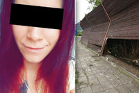 Následky nehody z šíleného videa: Jak je na tom spolujezdkyně Nikola V.?