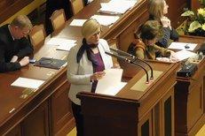 Ministryně Šlechtová hájila ve Sněmovně zákon o pohřebnictví