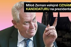 Kandidatura Miloše Zemana