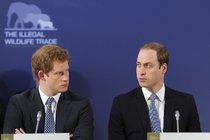 Chcete být král nebo královna? Harry ani William o trůn nestojí!
