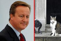 Premiér odchází, ale... Kocour Larry zůstává!