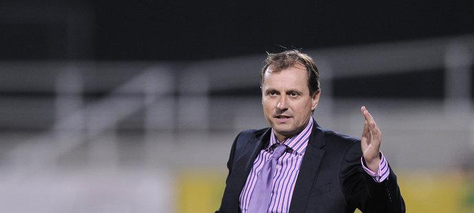 Trenér Martin Pulpit mohl být po výhře nad Hořovickem na lavičce Příbrami konečně spokojený.