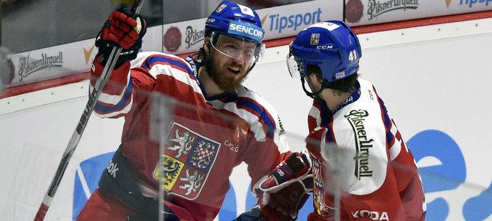 To byla odveta! Češi vrátili Švédsku porážku a vyhráli vysoko 7:1