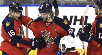 Jágr gólem nastartoval obrat, Hertl má poprvé v NHL dvacet branek