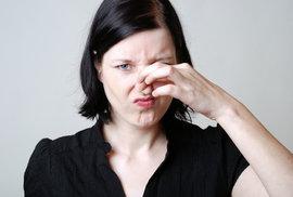 Máte dobrý čich? Nejspíš nebudete promiskuitní, ale budete volit autoritáře, říkají …