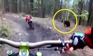 Českému bikerovi vběhl do cesty medvěd! Poslechněte si, co Alan prožíval