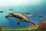 Atopodentatus oštipoval porosty mořských řas