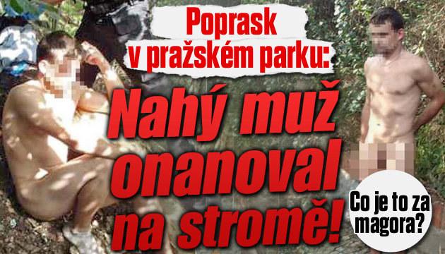 Nahý muž v Praze na stromě onanoval