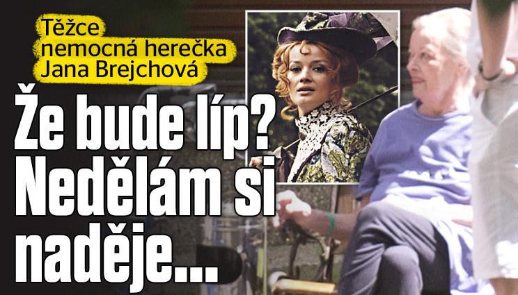 Těžce nemocná herečka Jana Brejchová