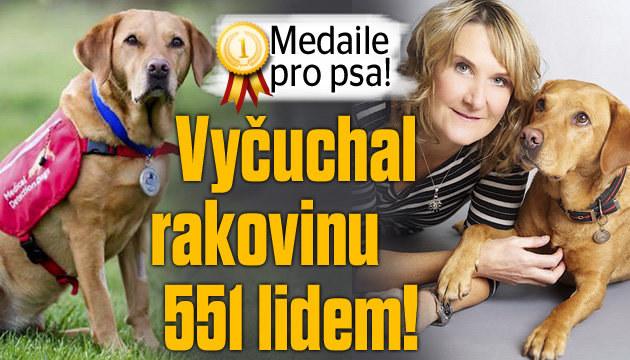 Pes vyčuchal rakovinu 551 lidem
