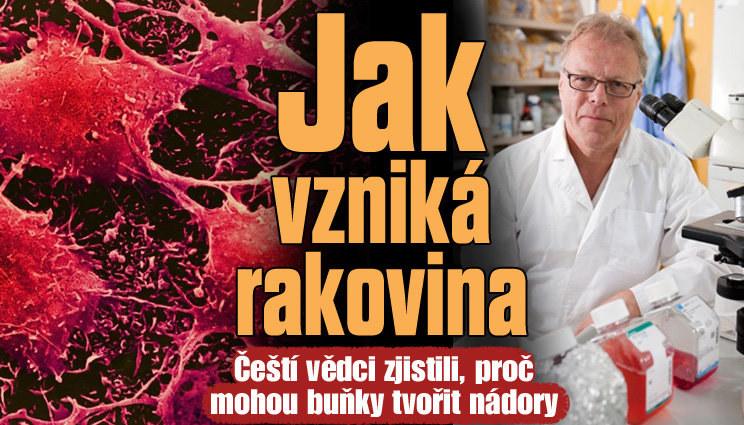 Objev českých vědců: Jak vzniká rakovina