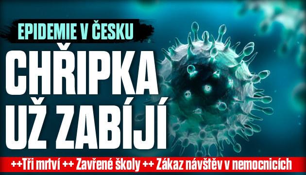 Chřipka už v Česku zabíjí!