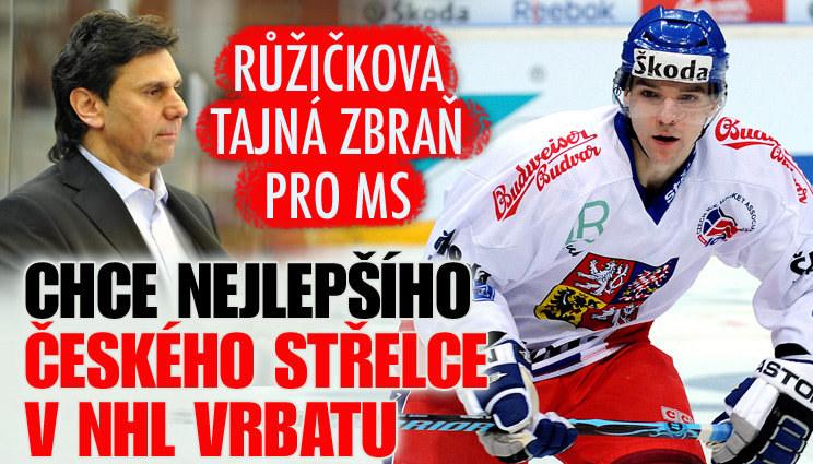Posílí národní tým nejlepší  český střelec v NHL?