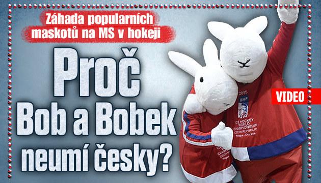Záhada kolem maskotů MS Boba a Bobka